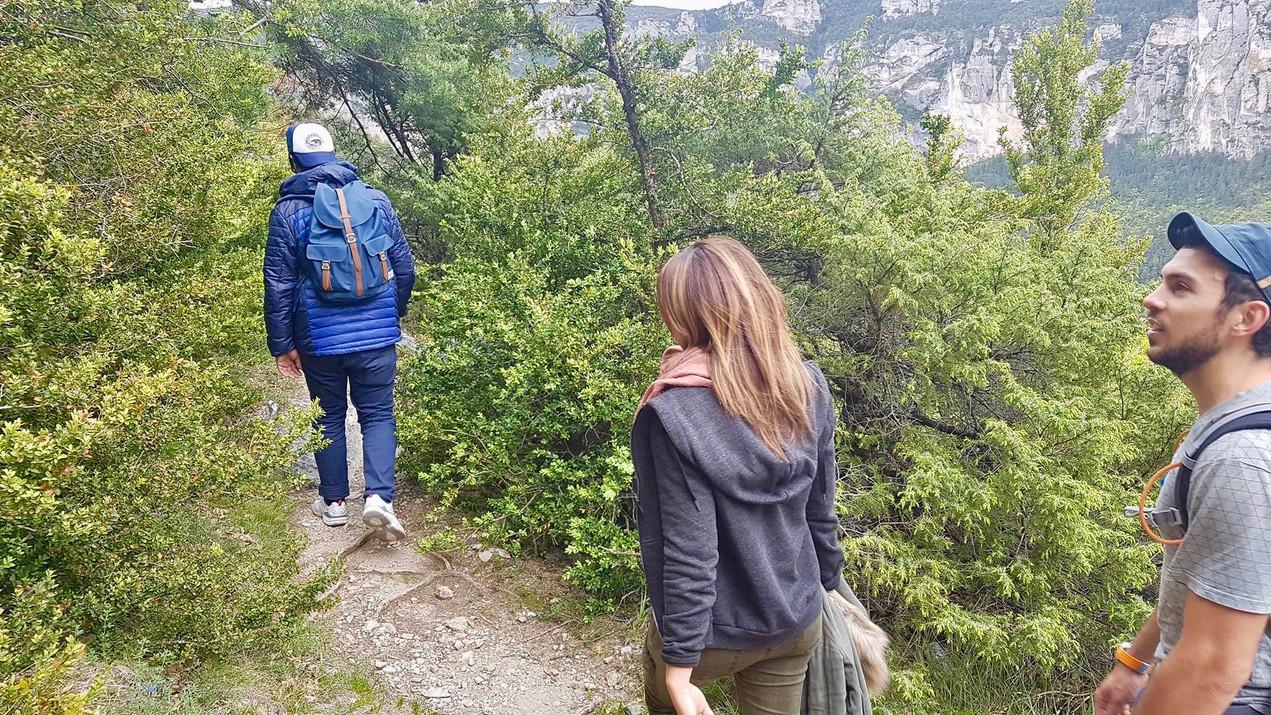 causse de Sauveterre - Randonnée à la journée - la vue des cimes