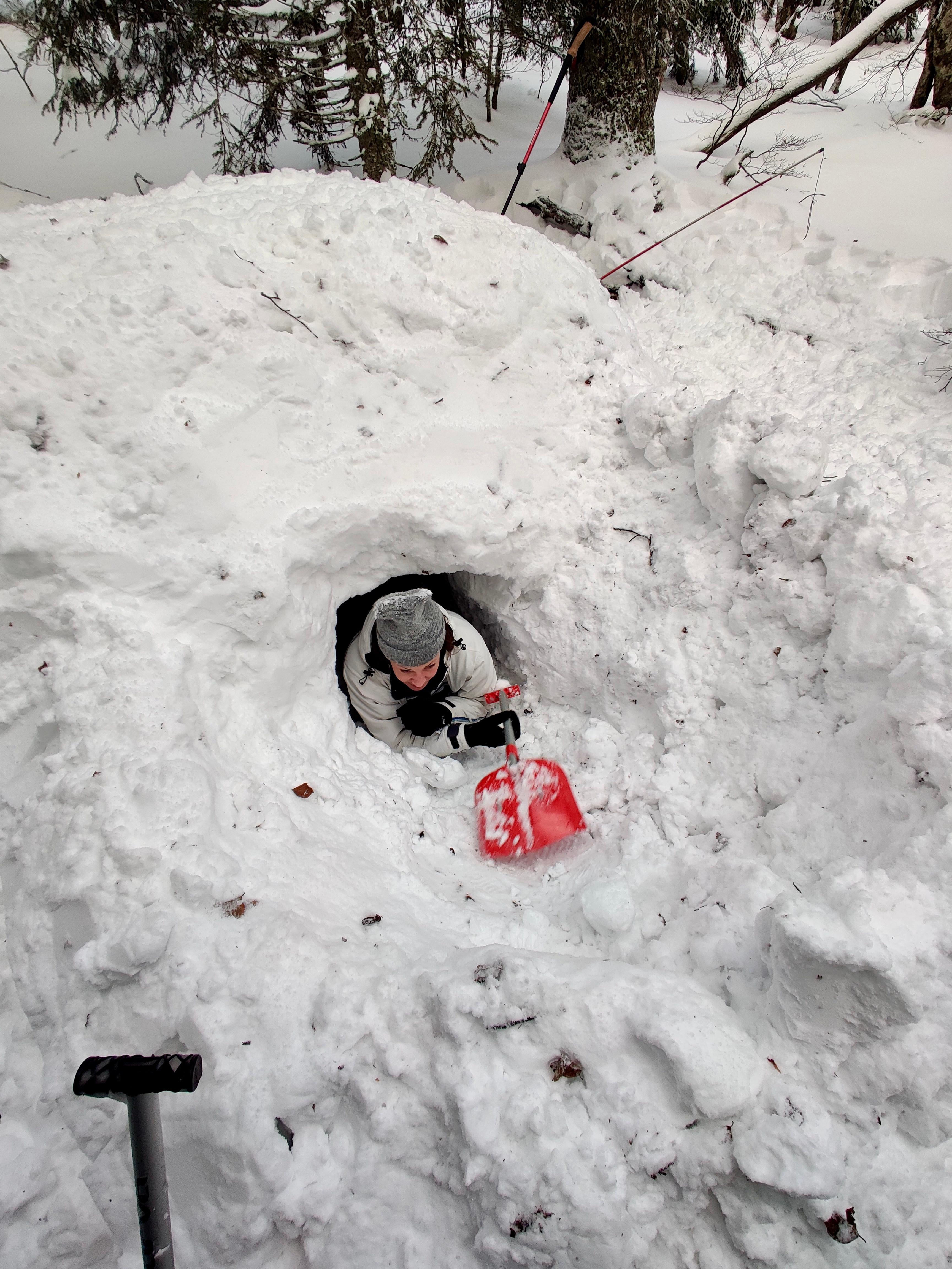 Sortie construction d'igloo
