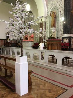 White Cherry Blossom Church Pot Plant 2