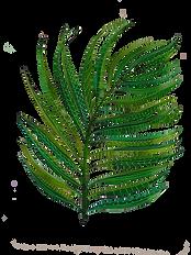 palmfrond.png