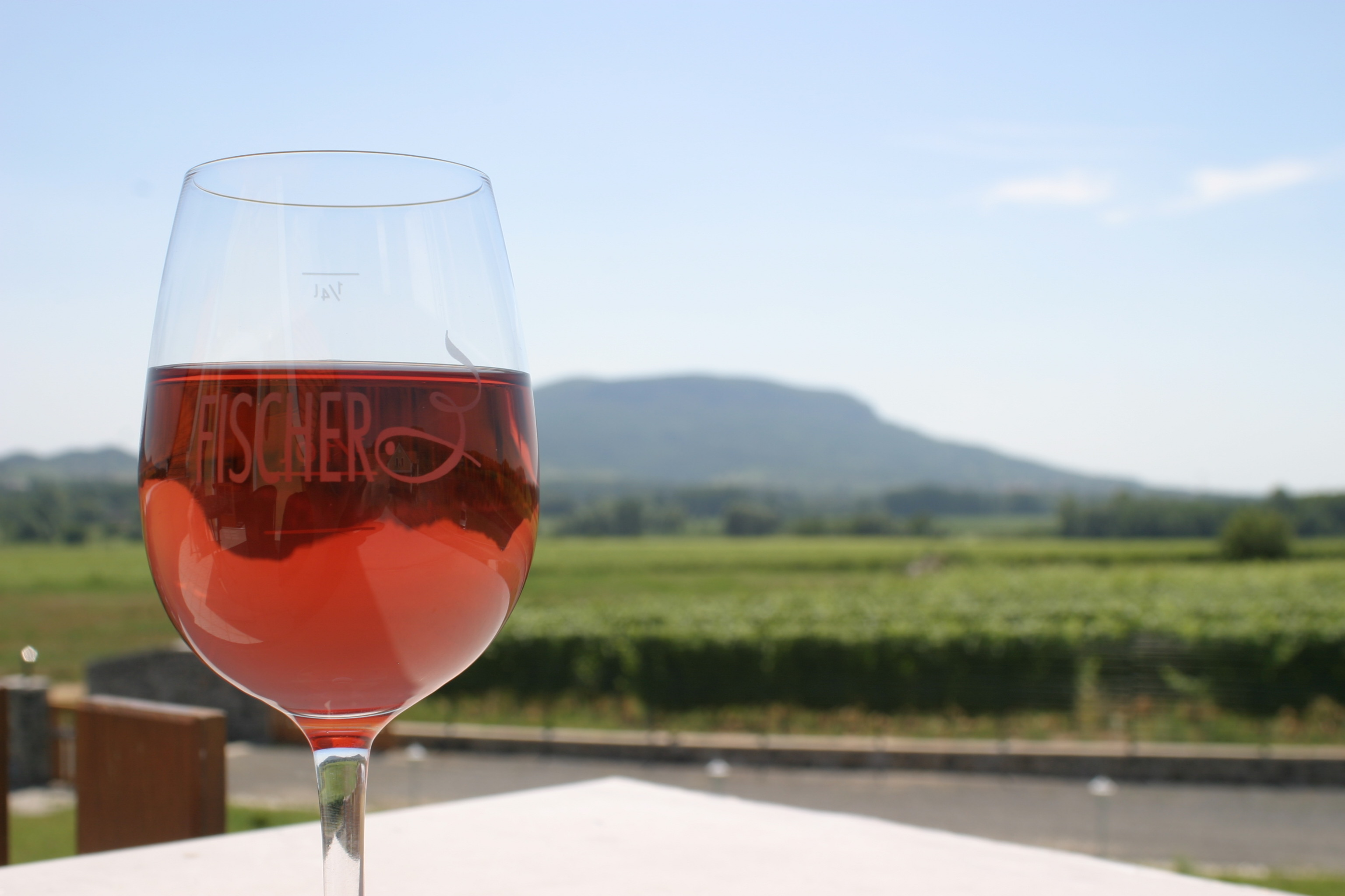 Wein aus Ungarn