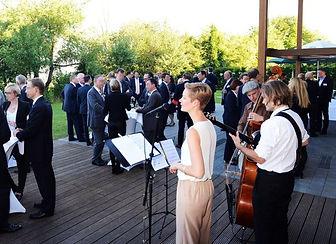 Musik für Empfang,Dinnerjazz, Bossa Nova, Jazz Trio