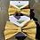 Thumbnail: The Provincial Flower Bow Tie