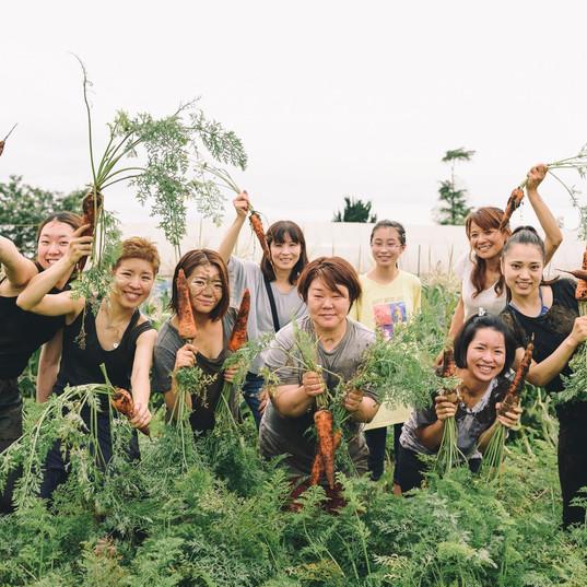 畑の有機野菜を収穫してその場で食べられます。