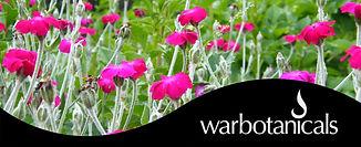 warbotanicalss.jpg