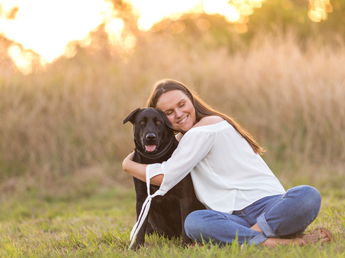 brisbane-petphotography-labrador