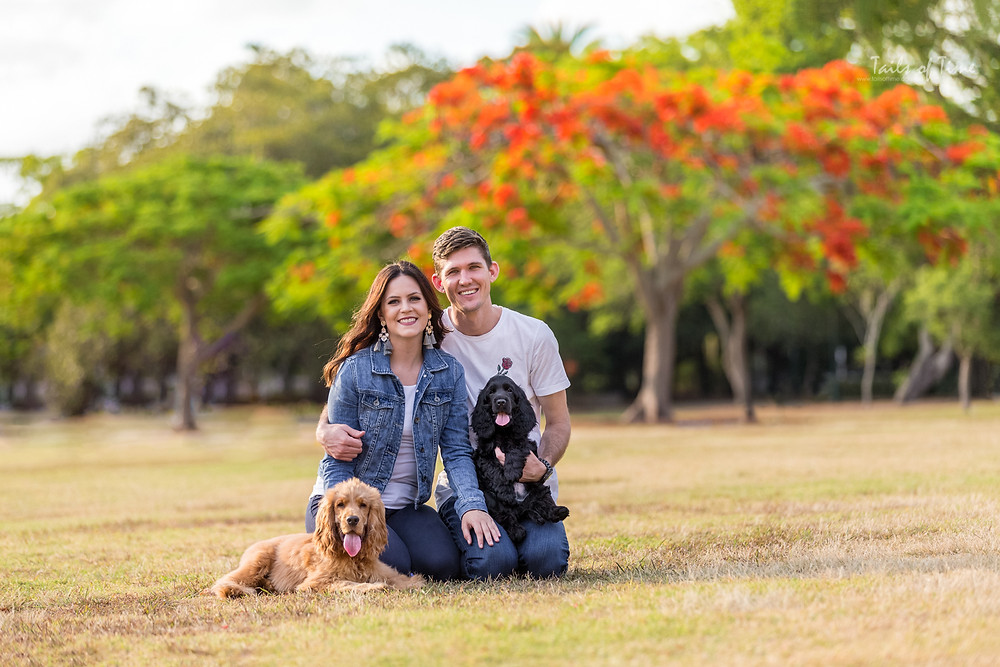 family portrait with dogs at new farm park