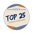 Top25Badge-ACTION.png
