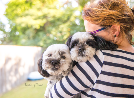 Guest Post | National Cook for your Pets Day! by Suburban Pup