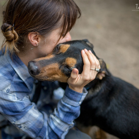 Helping the Helpless - A Mexican Animal Shelter Mission