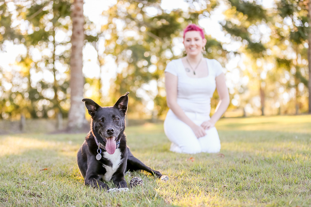 A young girl and her black kelpie during their pet photography session