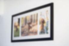 brisbanepet photography photo frame options