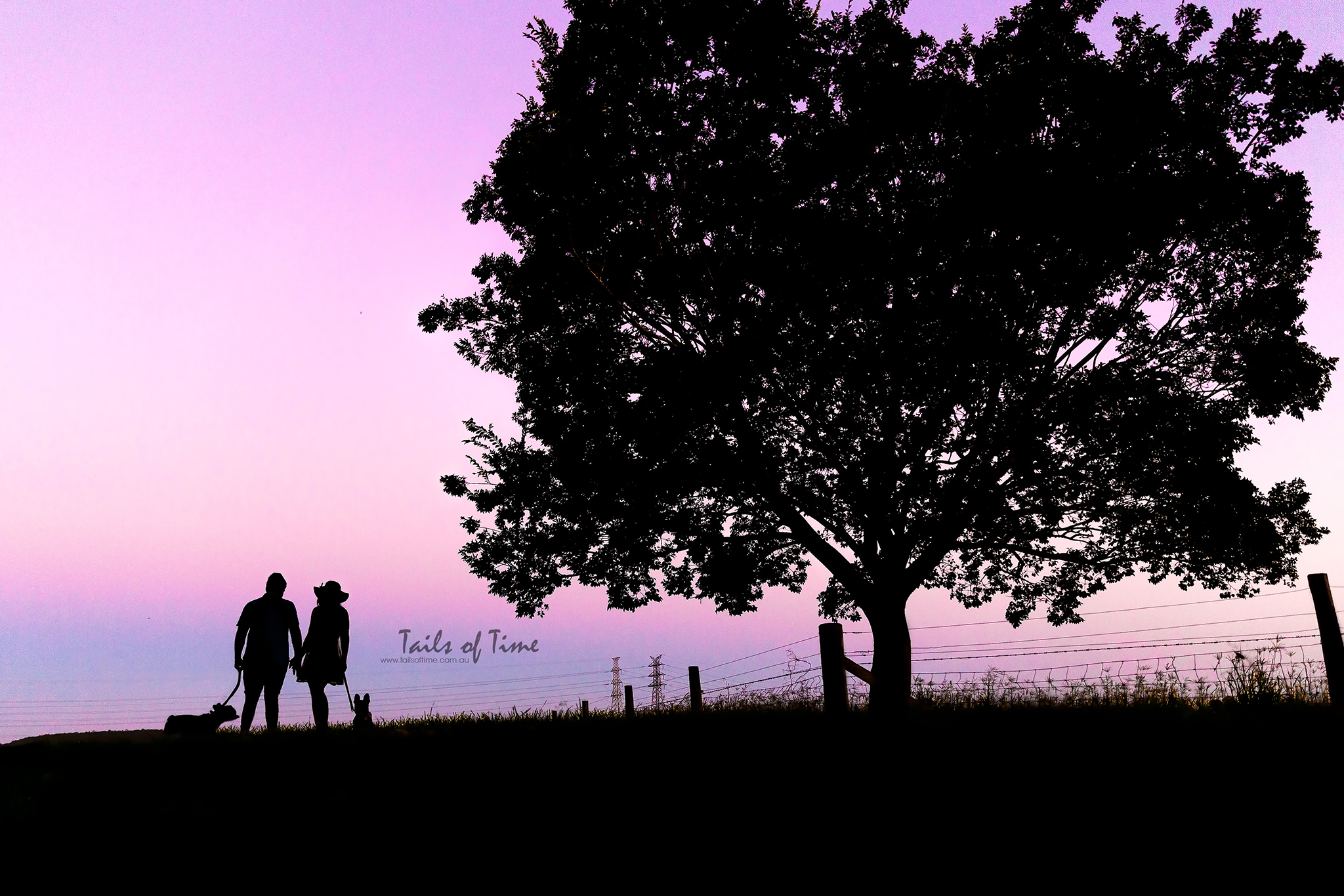 silhouette family photography