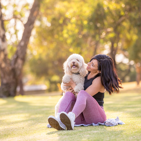 What should you wear for your pet's photoshoot?
