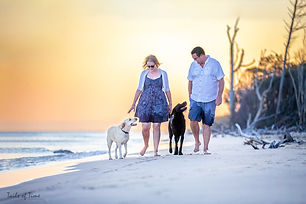 brisbane-pet-photography-902.jpg