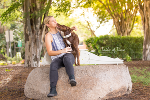 A session at New Farm Park Brisbane by Tails of Time Pet Photography