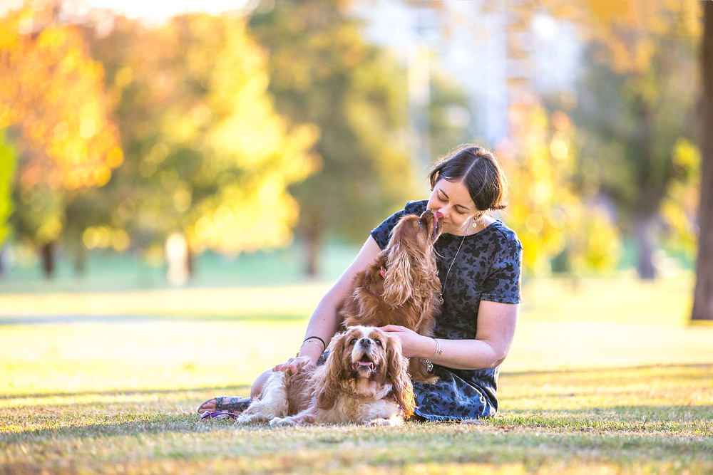 Toowoomba pet photography dalby Queens Park