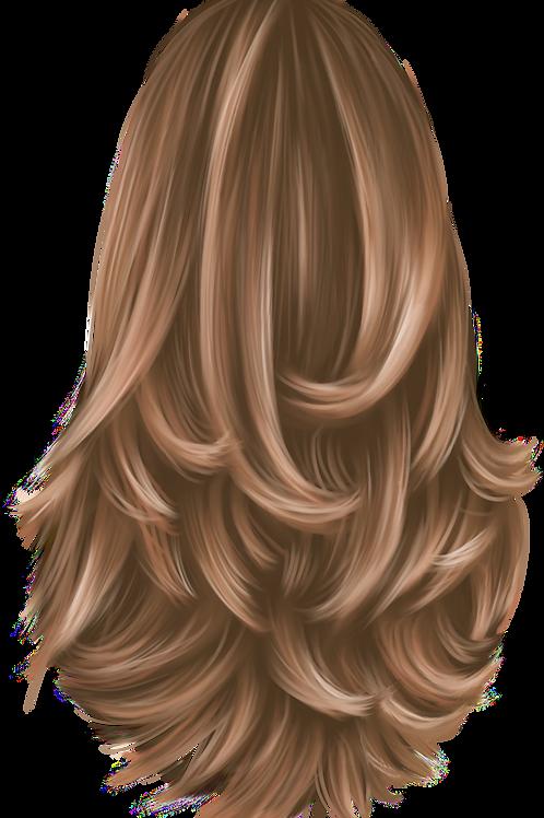 Ladies Hair Style 4