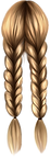 Braids_style1 (18).png