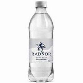 Radnor Hills Sparkling Water 24x500ml