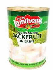 Jackfruit Organic 565g