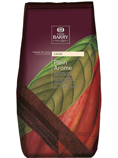 Cocoa Powder Plein Arome 1kg