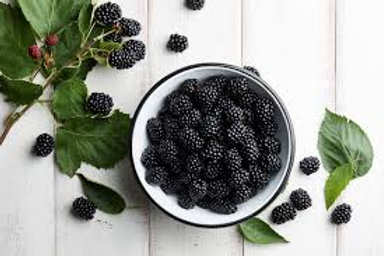 Blackberry punnet 125g