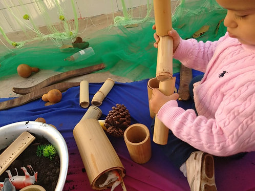 Eco-Arte para Bebês 30.11