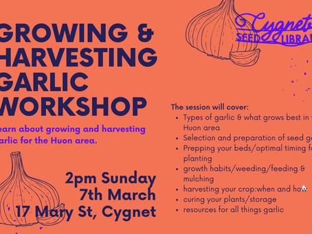 Free Event: Garlic Growing & Harvesting Workshop