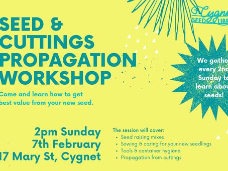 Seed & Cuttings Propagation Workshop