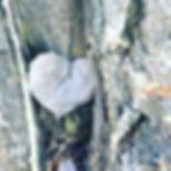 heart photo.JPG