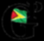 Guyana Premier.png