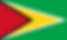 Flag_of_Guyana.svg.png