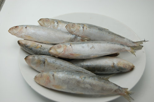 Pilchards - Per Packet