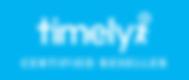 Timely-Partner-Blue-Lrg.png