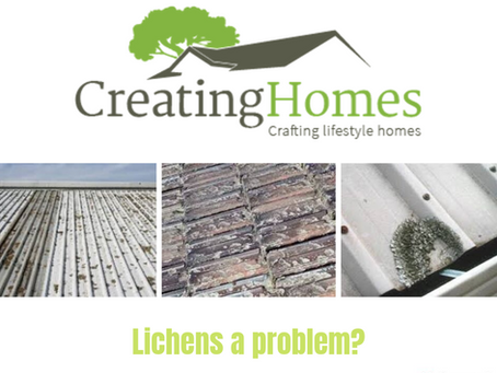 Lichens a problem?