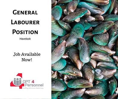 General Labourer Havelock Mussels.png