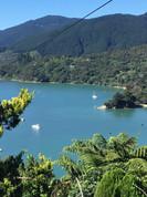 Mahau Sound. Marlborough