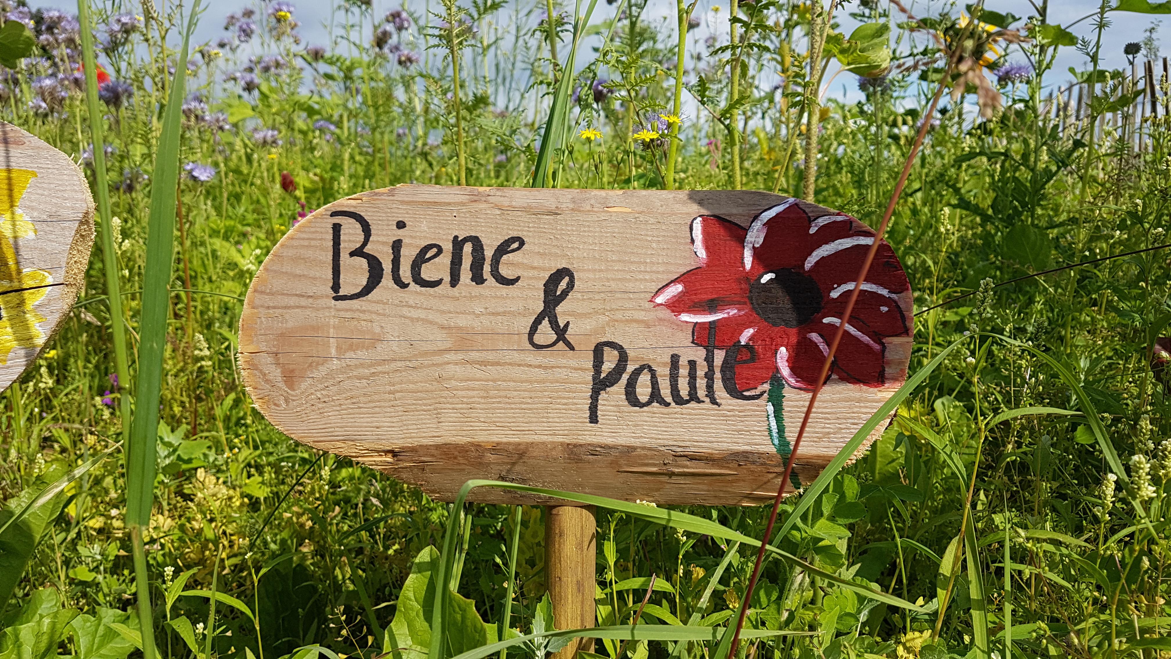 Biene Paul