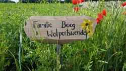 Familie Boog Juni_2020