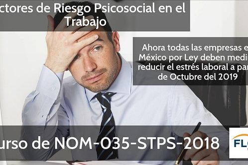 Taller Personalizado NOM035 Factores de Riesgos Psicosocial en el Trabajo