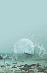 Dandelion Mangrove - Full Moon 2021