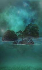 Escape - Turtleback Island