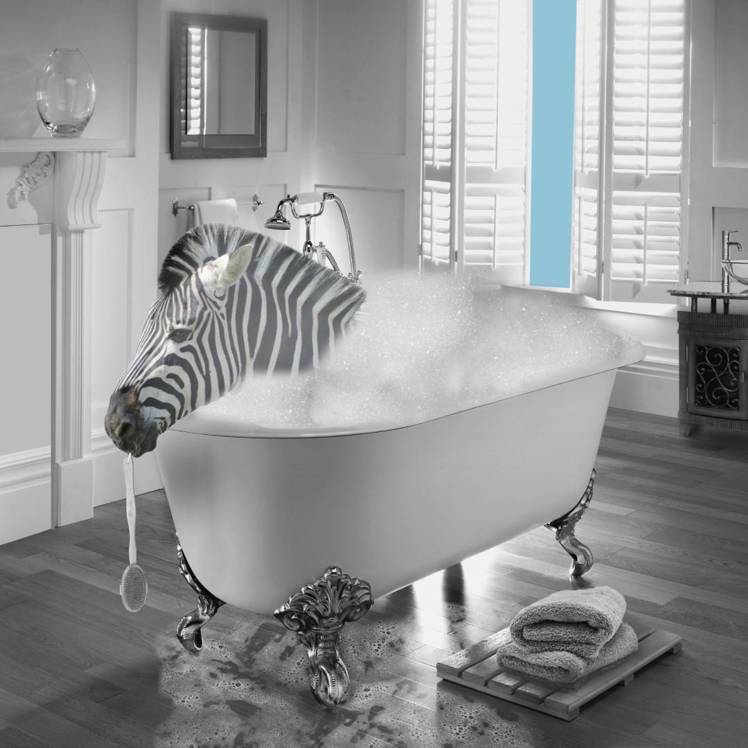 Zebra Bubble Bath (Large)