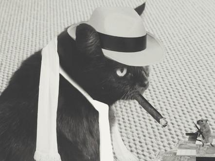Mocha The Mobster