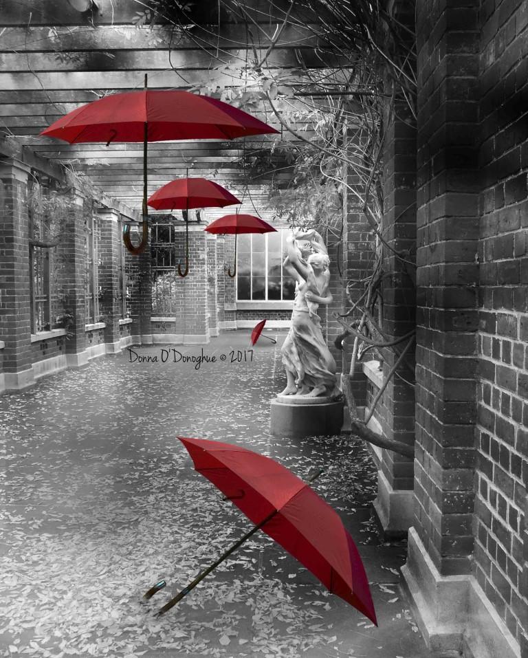 Umbrella Winter Garden