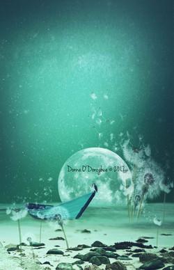Danelion Mangrove - Full moon cr (Medium