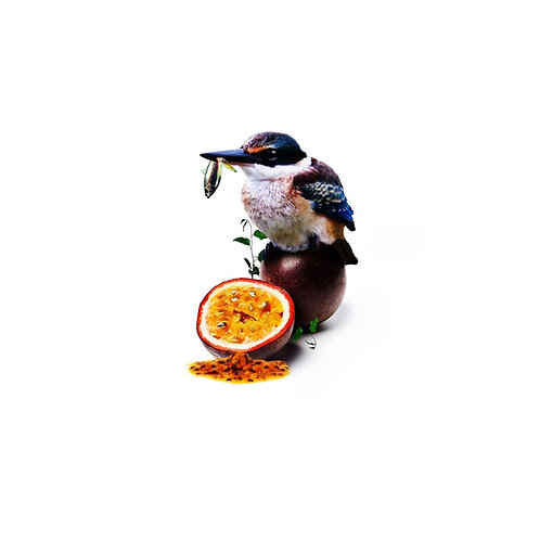 Kingfisher Passionfruit