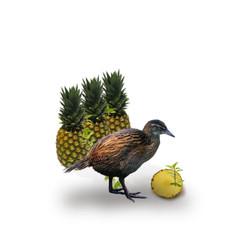 Weka Pineapple (Large)