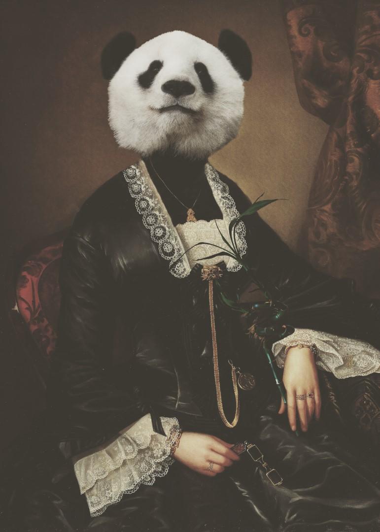Lady Mayer 1884